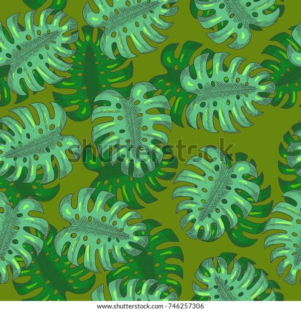 Monstera Leaves Seamless Pattern Hand Drawn. Vector illustration