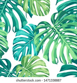 Monstera tropical plant / houseplant design featuring large green leaves on a white background. Seamless vector repeating pattern.