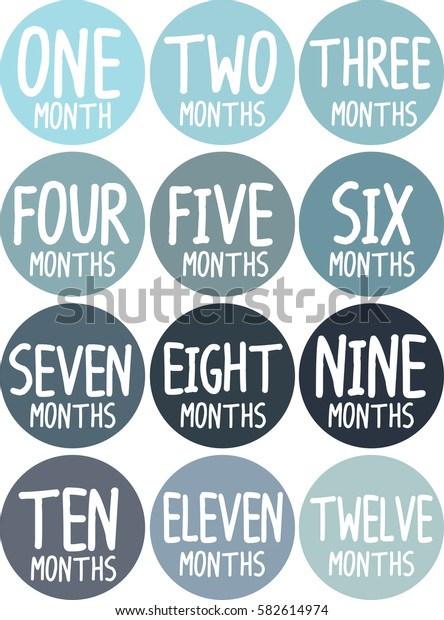 Monthly baby stickers colorful set color one year vector circle shape