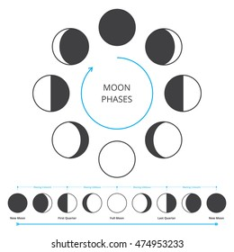 Moon phases icons. Astronomy lunar symbols isolated over white background. Whole cycle from new to full moon. Crescent and gibbous signs. Vector eps8 illustration.