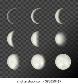 Moon phases on a transparent background. Vector Illustration, EPS 10