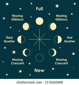 Moon phases vector illustration.
