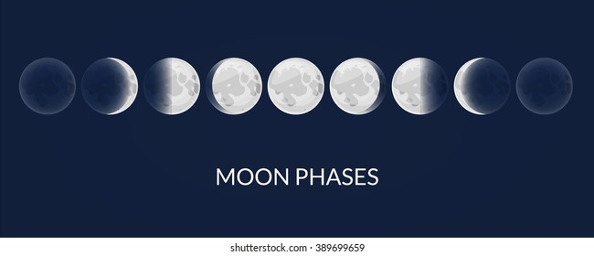 Moon phases, vector illustration natural satellite of the Earth