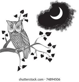 Moonlight Owl, Doodle