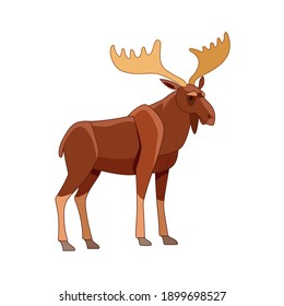 Moose or Elk, Alces alces. Beautiful animal in the nature habitat. Wildlife scene. Cartoon character vector flat illustration isolated on a white background.