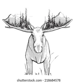 Moose Forest and Mountains Illustration. Animal in the nature drawing. Has white undercoat. Vector EPS8