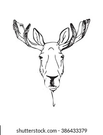moose head. illustration in a graphic style