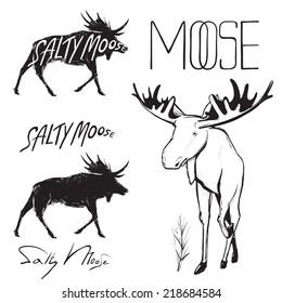 Moose and Lettering Monochrome Illustration. Elk black sketchy drawing. Big moose has white undercoat. Vector EPS8