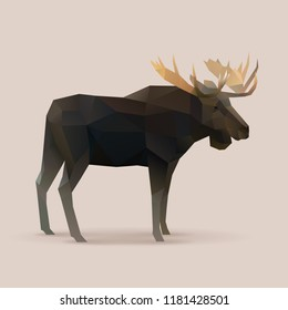 moose male Polygon vector illustration