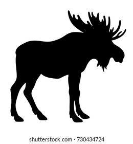 Moose silhouette isolated on white