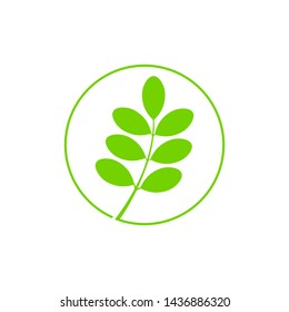 moringa circle icon symbol vector logo design illustration