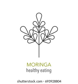 Moringa. Vector line icon. Healthy eating. Vector illustration.