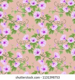 Morning glory flowers seamless pattern.