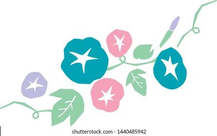 morning glory flowers vector illustration