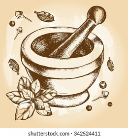 Mortar and pestle, basil leaves, black pepper, cloves and cardamom. Hand-drawn vector  illustration.