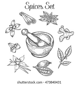 Mortar and pestle with spices. Hand drawn sketch vector retro vintage illustration. Bowl, vessel for milling spice and medical herbs. Hand mill. Isolated on white background