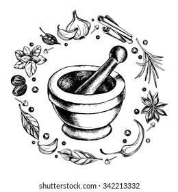 Mortar and pestle in a wreath of spices and herbs, hand-drawn vector illustration
