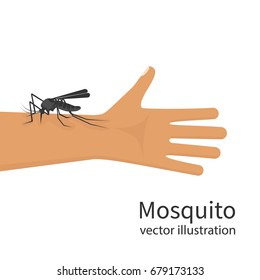 Mosquito bite on skin hand human. Insect bites man in arm. Template dangers Zika virus. Drinks the blood. Bloodsucking pest. Vector illustration flat design. Isolated on background. Malaria epidemic.