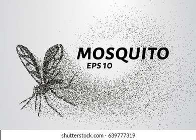 The mosquito of the particles. The mosquito consists of small circles and dots. Vector illustration