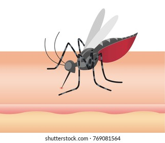 Mosquito sucking blood through human skin icon. Symptoms of dengue fever, Sika virus, mosquito-borne plague. image for objects, background, brochures and copy space.