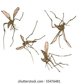 Kill Mosquitos Images, Stock Photos & Vectors | Shutterstock