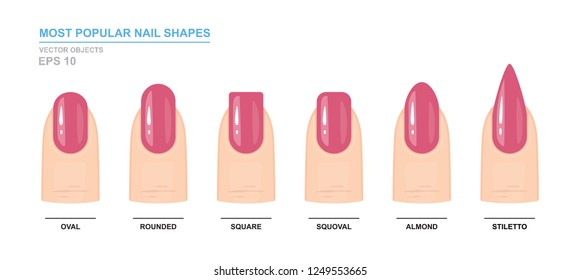 Most popular nail shapes. Different kinds of nail shapes. Manicure Guide. Vector illustration