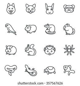 The most popular pets as line icons / There are typical pets like dog, cat, ferret and bird