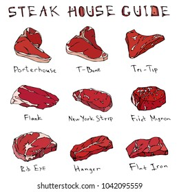 Most Popular Steak Types Set. Beef Cuts. Top Meat Guide for Butcher Shop or Steak House Restaurant Menu. Hand Drawn Illustration. Savoyar Doodle Style. Porterhouse, T-bone, New York Strip, Rib Eye.