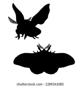 Moth silhouette. Black white icon of bloodworm. Vector illustration. Logo desing