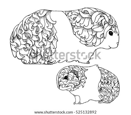 Mother Baby Guinea Pig Zentangle Page Stock Vector Royalty Free