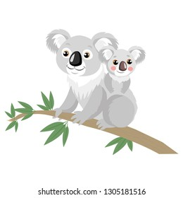 Mother And Baby Koala Bear On Wood Branch With Green Leaves. Australian Animal Funniest Koala Sitting On Eucalyptus Branch.