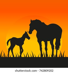 Mother and child horses