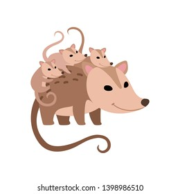 Mother Opossum with Its Babies, Family of Opossums Vector Illustration