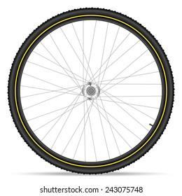 Mountain bike wheel on a white background.