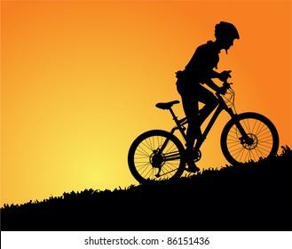 Mountain biker in sunset vector image