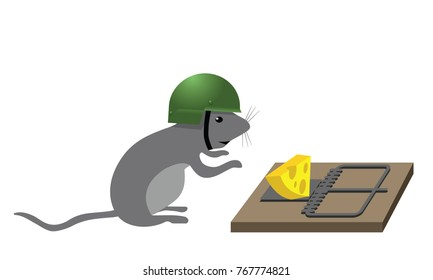 mouse with helmet approaching trap