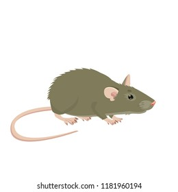 Mouse, Rat Vector Sign Illustration. Rat Isolated On White Background. Rat Vector Disease. Harmful Rodent. House Mouse Vector Drawing.