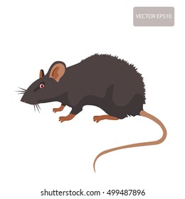 Mouse, Rat Vector Sign Illustration. Rat Isolated On White Background. Rat Vector Disease. Harmful Rodent. House Mouse Vector Drawing Home Parasite.