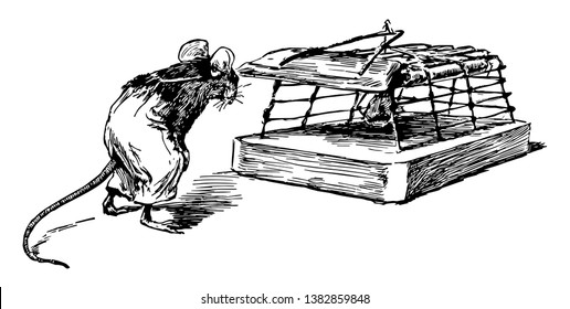 Mouse and Trap, this picture shows a mouse looking at another mouse who trapped into net, vintage line drawing or engraving illustration