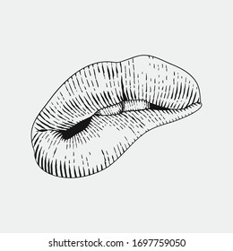 mouth engraving hand draw vector illustration