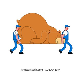 Movers and Bear. Porters carry Big animal. Delivery service. Loader mover man holding. Moving Vector illustration
