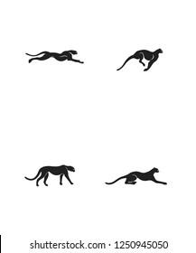 Сheetah moves. Run, Jump, Attack, Pursue, Chase. High Detail Vector illustration.