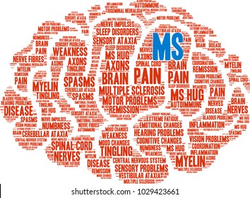 MS Multiple Sclerosis Brain word cloud on a white background.