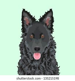 Mudi, The buddy dog