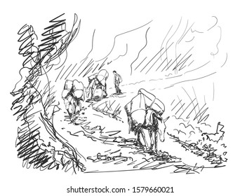 Mule caravan carrying load in mountains, This type of cargo transport widely used in himalayas, Vector sketch, Hand drawn illustration