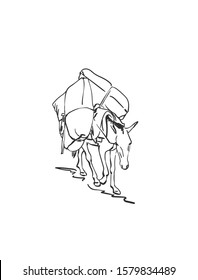 Mule is carrying load on his back, This type of cargo transport widely used in himalayas, Vector sketch, Hand drawn linear illustration
