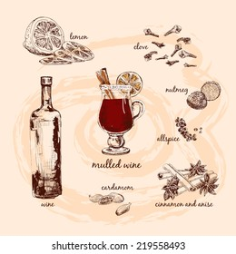 Mulled wine and its components. Hand drawn graphic illustrations