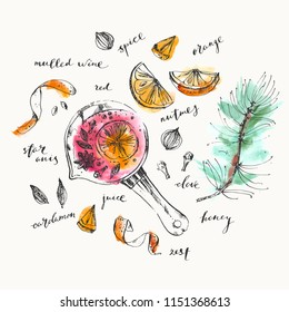 Mulled wine pot and ingredients ink and watercolor illustration. Red wine, orange, zest, spices, pine, clove, star anise, nutmeg, cardamon. For food background and recipe card.
