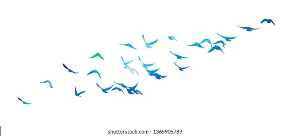 Multicolored abstract flock of birds in the sky. Vector illustra