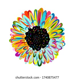 Multicolored daisy, chamomile flower isolated. Sketch for your design. Vector illustration